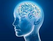 médiologie_cerveau_activité_internet