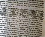 nez_qu_voque_ducharme_ecriture